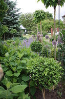 Landgartenidylle at the Rose Family
