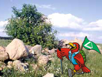 Wanderung um Jeber Bergfrieden