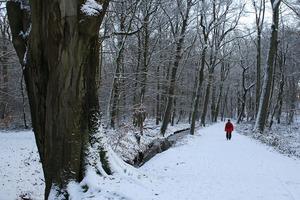 Winterwanderung Kloster