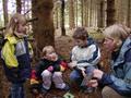 Kinder_im_Wald